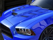 2011-2014 Charger Viper Styled Hood 113005