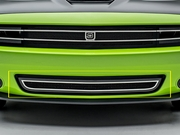 2015-2017 Dodge Challenger Phantom Style Lower Grille DJ24191 by Trex