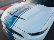 Shelby SS50THHOOD Mustang Supersnake Hood 2015-2017