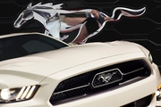 2015 Mustang  50 Year Package Upper Chrome Grille (2015 GT)