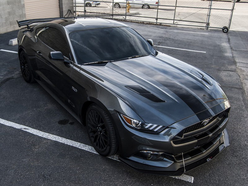 apr cw 201510 2015 2017 mustang gt front carbon fiber splitter w performance package. Black Bedroom Furniture Sets. Home Design Ideas