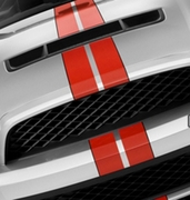 Color Samples for 2010-2012 Ford Mustang Shelby GT500 SVT Performance Style Rally Stripe Graphic Kit 1