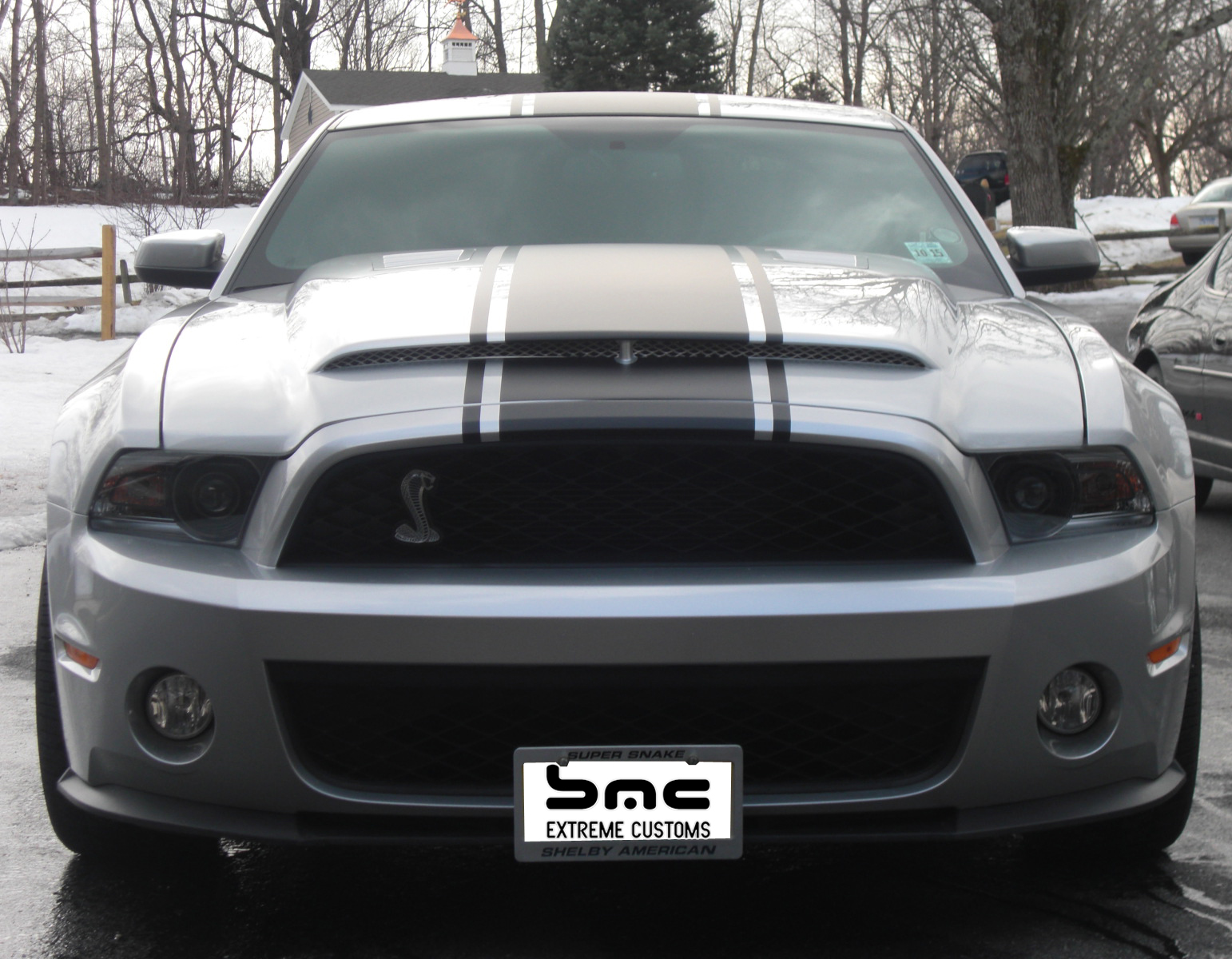 All Types 2010 mustang shelby : Ford Mustang GT500 Black Mamba Hood 2010-2014
