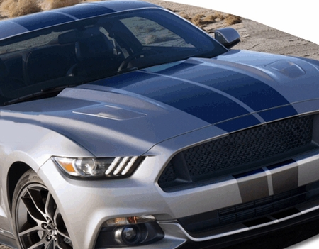 Ford Mustang Rally Stripes Graphic Kit 2015-2019