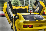 Vertical / Lambo Doors