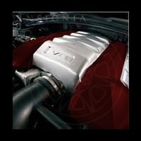 2010-2011 Tintcoat Engine Covers - Red Jewel