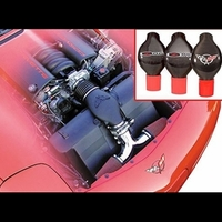 Corvette Dual Air Intake & Power Duct with C5 Emblem : 2001-2004 C5