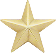 Smith And Warren Collar Brass Insignia -  1/2 INCH 1 STAR PAIR