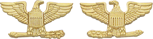 Smith And Warren Collar Brass Insignia -  EAGLES/LARGE PAIR