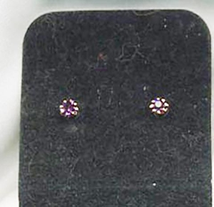 SARAH'S BIRTHSTONE Earrings - February