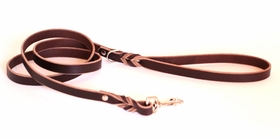 Standard Leather Leashes