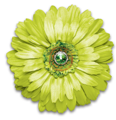 Locker Lookz Lime Green Flower Magnet
