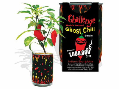 Ghost Pepper (Bhut Jolokia) Magic Plant Growing Kit