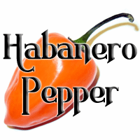 Habanero Pepper Products