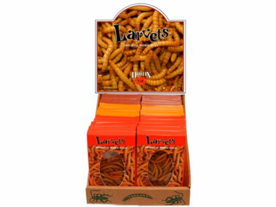 "Larvets ""Original Worm Snax"" - Case of 24 - Assorted Flavors"
