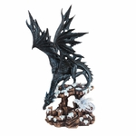 Black Dragon With Hatchling Dragon