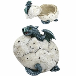 Blue Dragon Hatchling Box