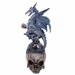 Dragon on Skull