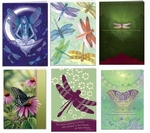 Dragonfly & Butterfly Greeting Card Set