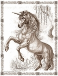 'Unicorn of the Willow' Large Print<br>by Ed Beard Jr