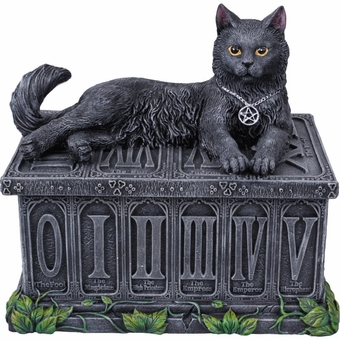 Fortune's Watcher Tarot Card Box