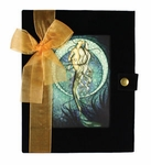 Jessica Galbreth Mermaid Journal