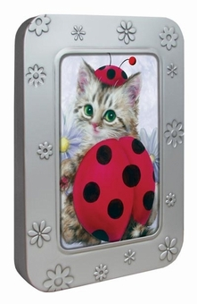 Lady Bug Kitten Notecard Tin