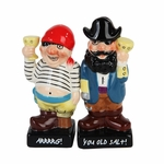 Magnetic Pirate Salt & Pepper Shakers