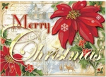 Merry Poinsettia Christmas Cards