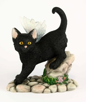 Midnight Fairy Cat