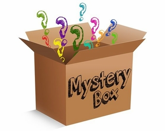 Mystery Box - $100 Value