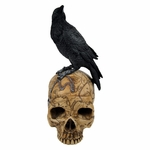 Salem Witch Skull with Raven