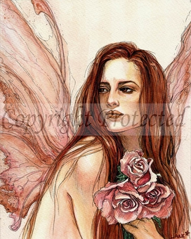 'Rose Fairie'<BR>by Jane Starr Weils
