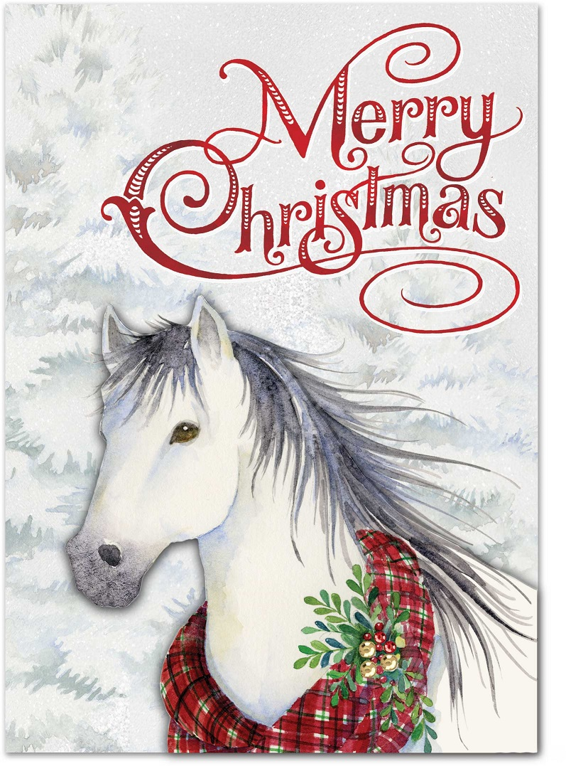 Snow Horse Christmas Cards: Punch Studio Gifts: FairyGlen.com