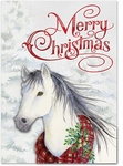 Snow Horse Christmas Cards