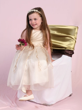 Elegant Organza Flower Girl Dress