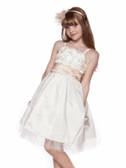 Ivory Rose Bodice Taffeta Dress