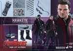 """12"""" Avengers Age of Ultron Hawheye 1/6th Scale Action Figure Hot Toys"""