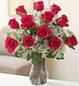 A dozen red roses arranged with baby breath