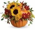 Autumn-Thanksgiving flowers