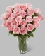 Long Stem Pink Rose Bouquet 24 rose