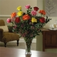 Magnificent Mixed Dozen Roses - Vase variety