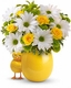 My Little Chickadee by Teleflora Get well