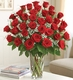 Premium Long Stem Red Roses 3 dozen