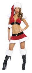 Christmas Costume, Santa Top and Skirt, Sexy Santa Outfit