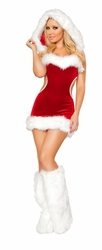 Sexy Claus Costume, Christmas Costumes, Women's Holiday Costume