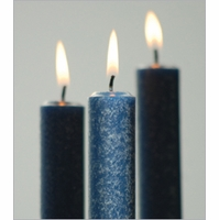 Timberline Arista Candles by Root