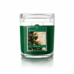 CLOSEOUT - Balsam Fir 8 oz. Oval Jar Colonial Candle | 8 oz. Oval Jar Colonial Candle