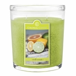 Citrus Woods 22 oz. Oval Jar Colonial Candle | 22 oz. Oval Jar Colonial Candle