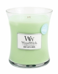 Mint Leaf & Basil WoodWick ODOR NEUTRALIZING Candle 10 oz. | Jar Candles - Woodwick Fall & Winter 2015